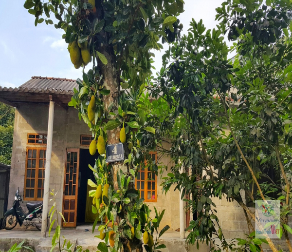 Thuy Bieu eco tour with homely lunch